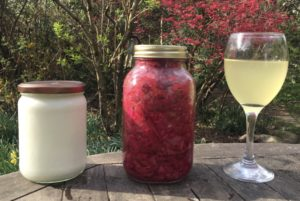 Healthy gut - fermented foods